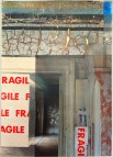 Beautiful Decay: Fragile (50cm x 70cm)